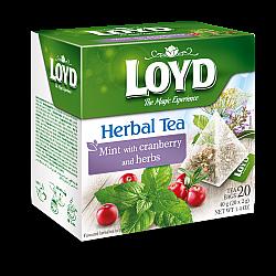 חליטת נענע חמוציות וצמחים לויד 20 שקיות תה פירמידה - LOYD
